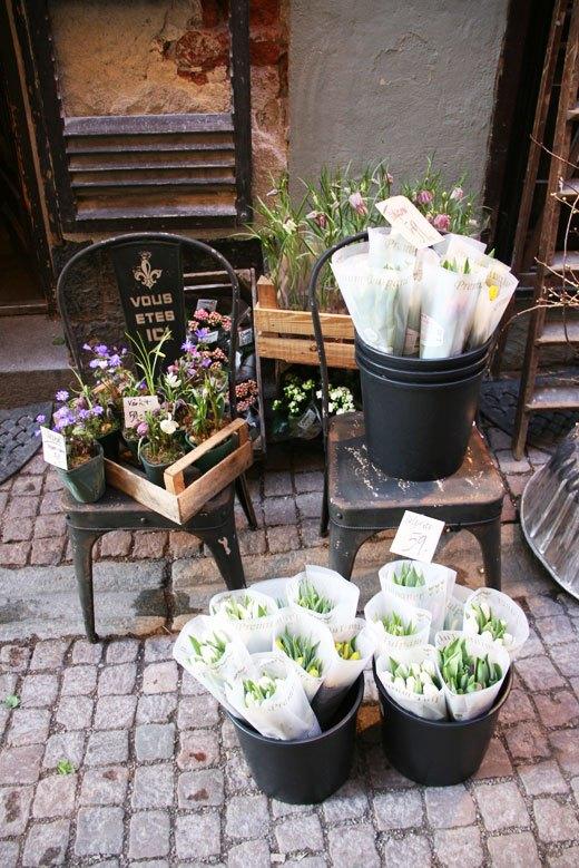 flower shop, store front, flowers, shopping in Gamla Stan Stockholm, flower store window