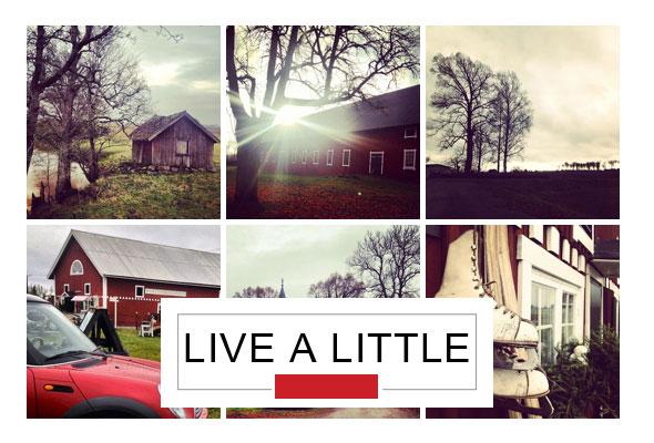 live-a-little-falltime