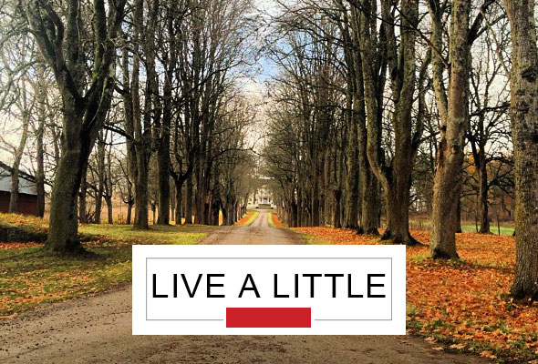 live-a-little-road