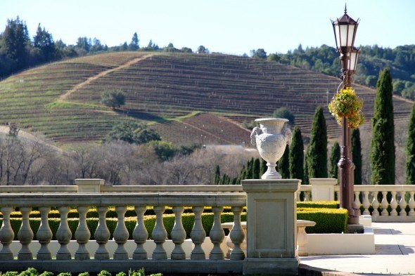 Travel Living The Rich Life At Ferrari Carano Vineyards