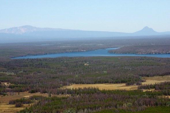 Road trip in BC, Canada I @SatuVW I Destination Unknown