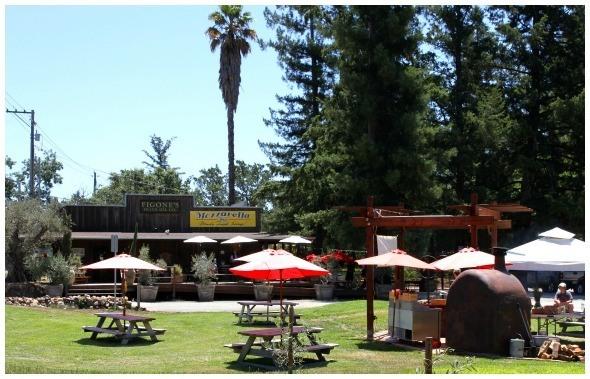 Figone Olive Oil Company in Sonoma Valley