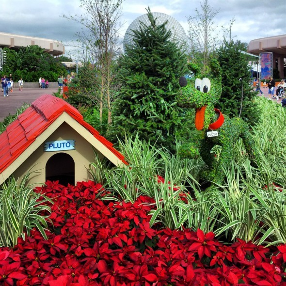 Pluto at Epcot During Christmas