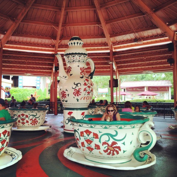Busch Gardens Tea Cup