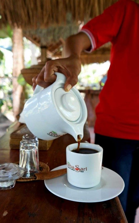 trying-civet-coffee-in-bali