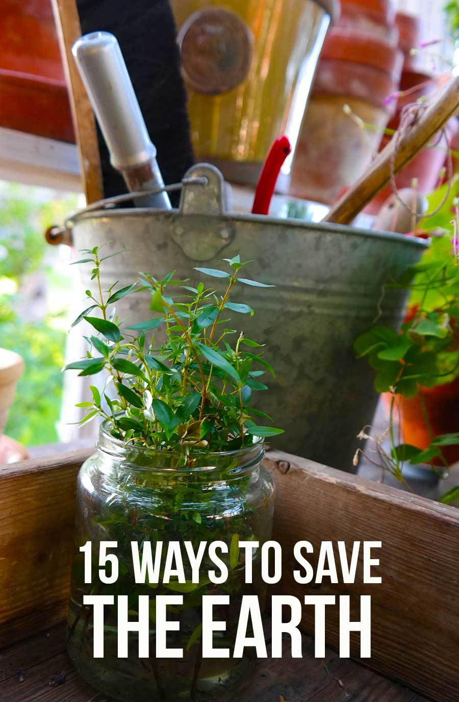 easy ways to save the earth skimbaco lifestyle online magazine 15 easy ways to save the earth