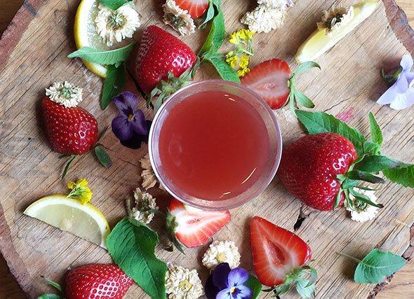 Strawberry Chrysanthemum Elixir