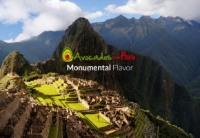 Join the party with Avocados from Peru