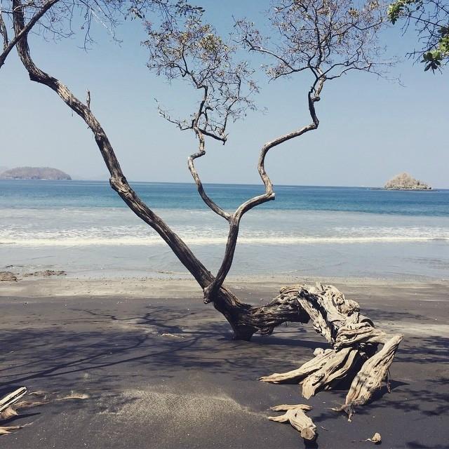 La Catalinas Wanderlust Living