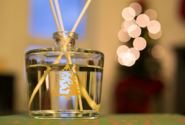 Thymes Holiday Traditions-11