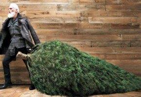 fashion santa claus