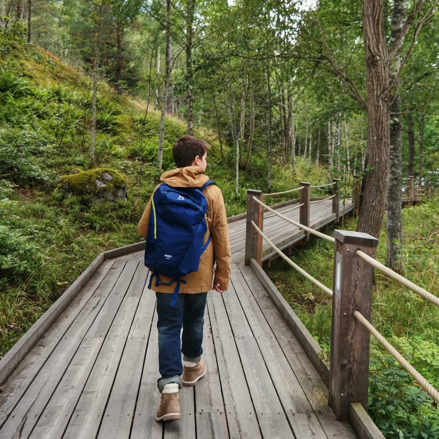 Journey in Sweden