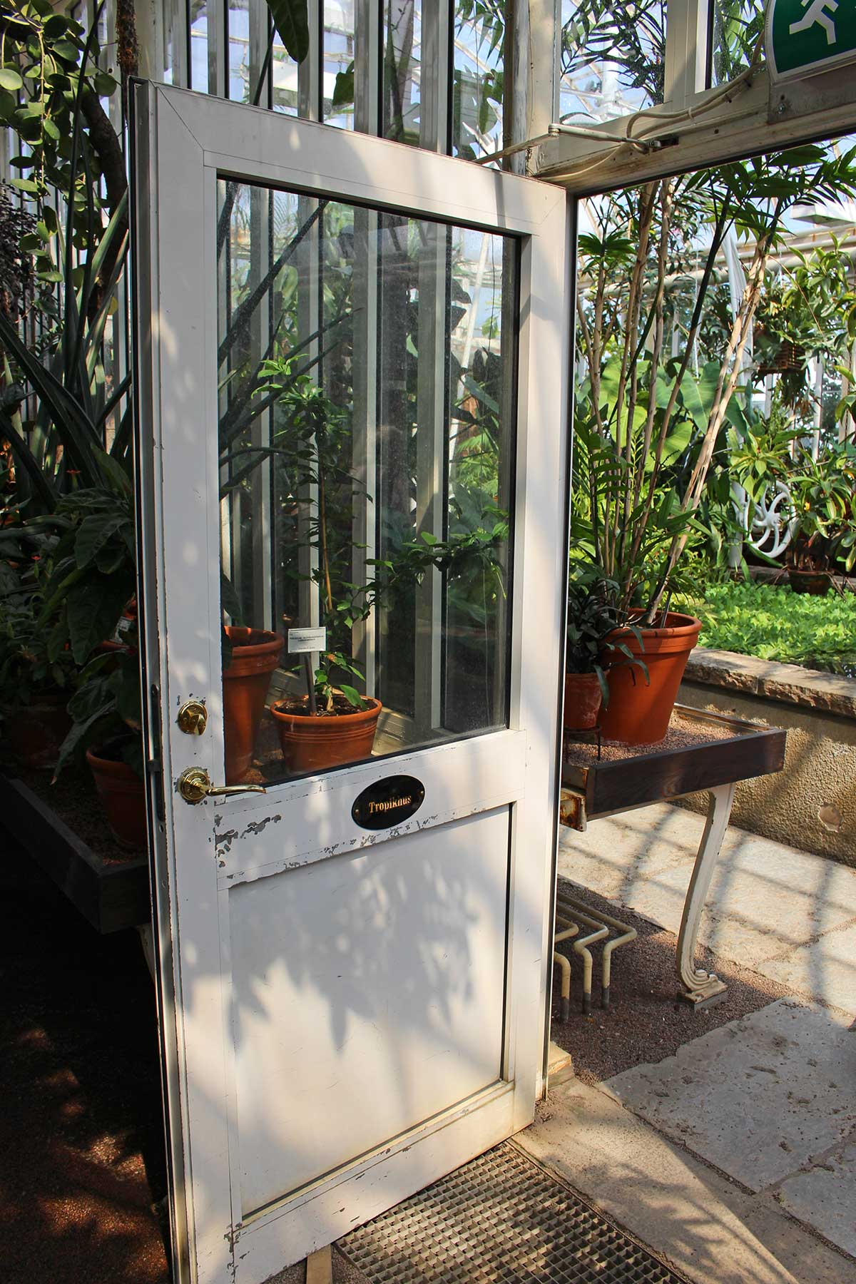 palmhouse-gothenburg-door-open