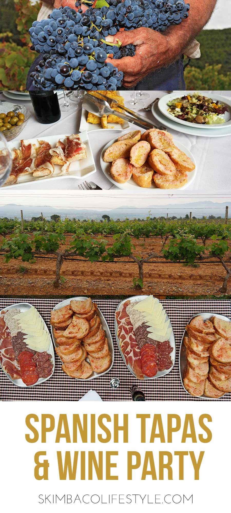 spanish-wine-and-tapas-party-ideas