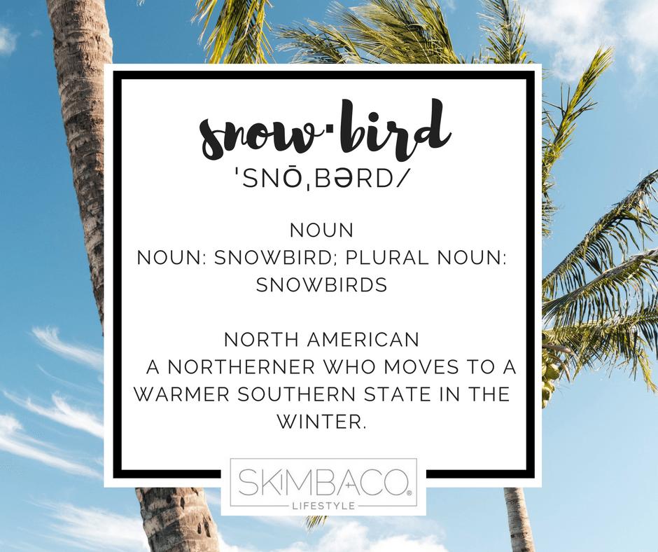 snowbird definition